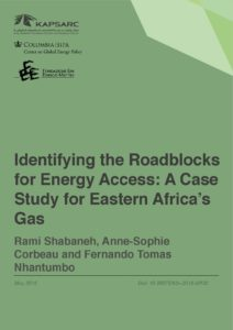 Identifying the Roadblocks for Energy Access: A Case Study for Eastern Africa's Gas