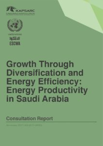 Growth Through Diversification and Energy Efficiency: Energy Productivity in Saudi Arabia