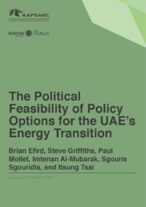 The Political Feasibility of Policy Options for the UAE's Energy Transition