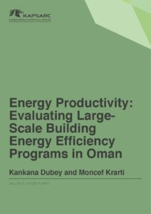 Energy Productivity: Evaluating Large-Scale Building Energy Efficiency Programs in Oman