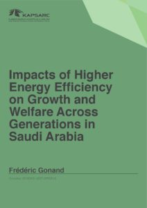 Impacts of Higher Energy Efficiency on Growth and Welfare Across Generations in Saudi Arabia