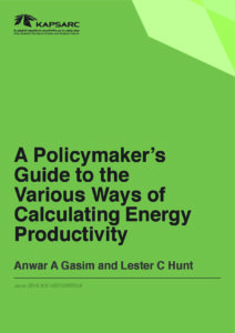 Policymakers Guide to the Various Ways of Calculating Energy Productivity