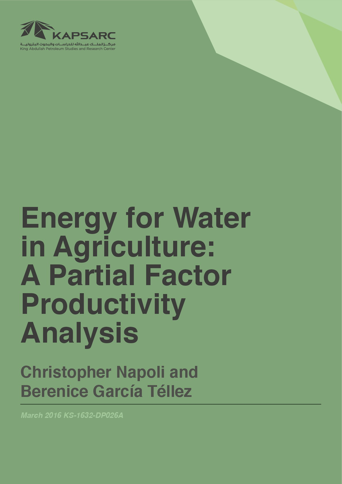 Energy for Water in Agriculture: A Partial Factor Productivity Analysis