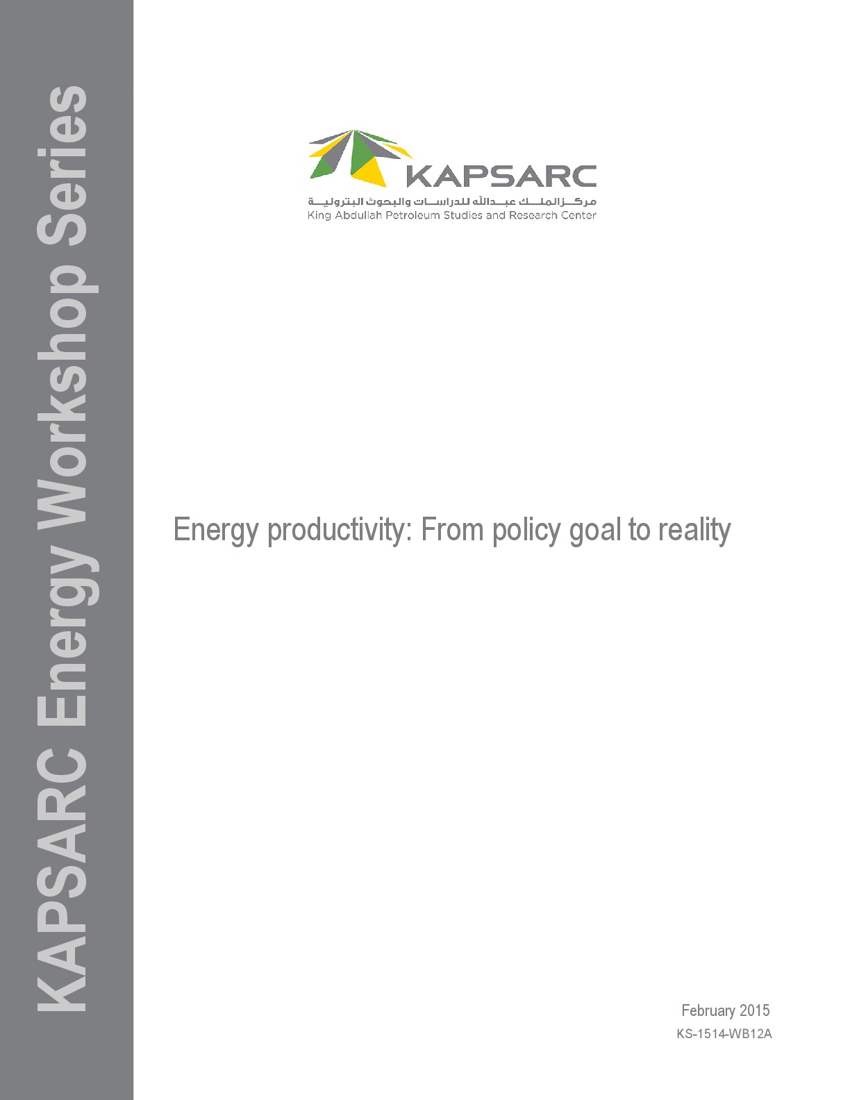 Energy productivity: From policy goal to reality