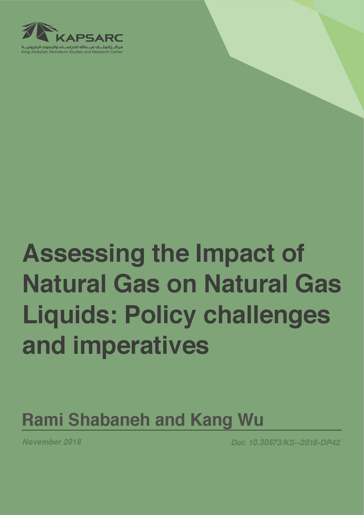 Assessing the Impact of Natural Gas on Natural Gas Liquids: Policy Challenges and Imperatives