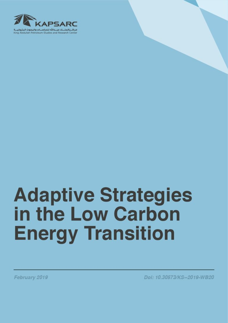 Adaptive Strategies in the Low Carbon Energy Transition
