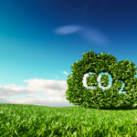 The Climate Adaptation and Mitigation Partnership (CAMP)