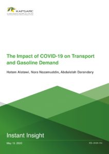 The Impact of COVID-19 on Transport and Gasoline Demand