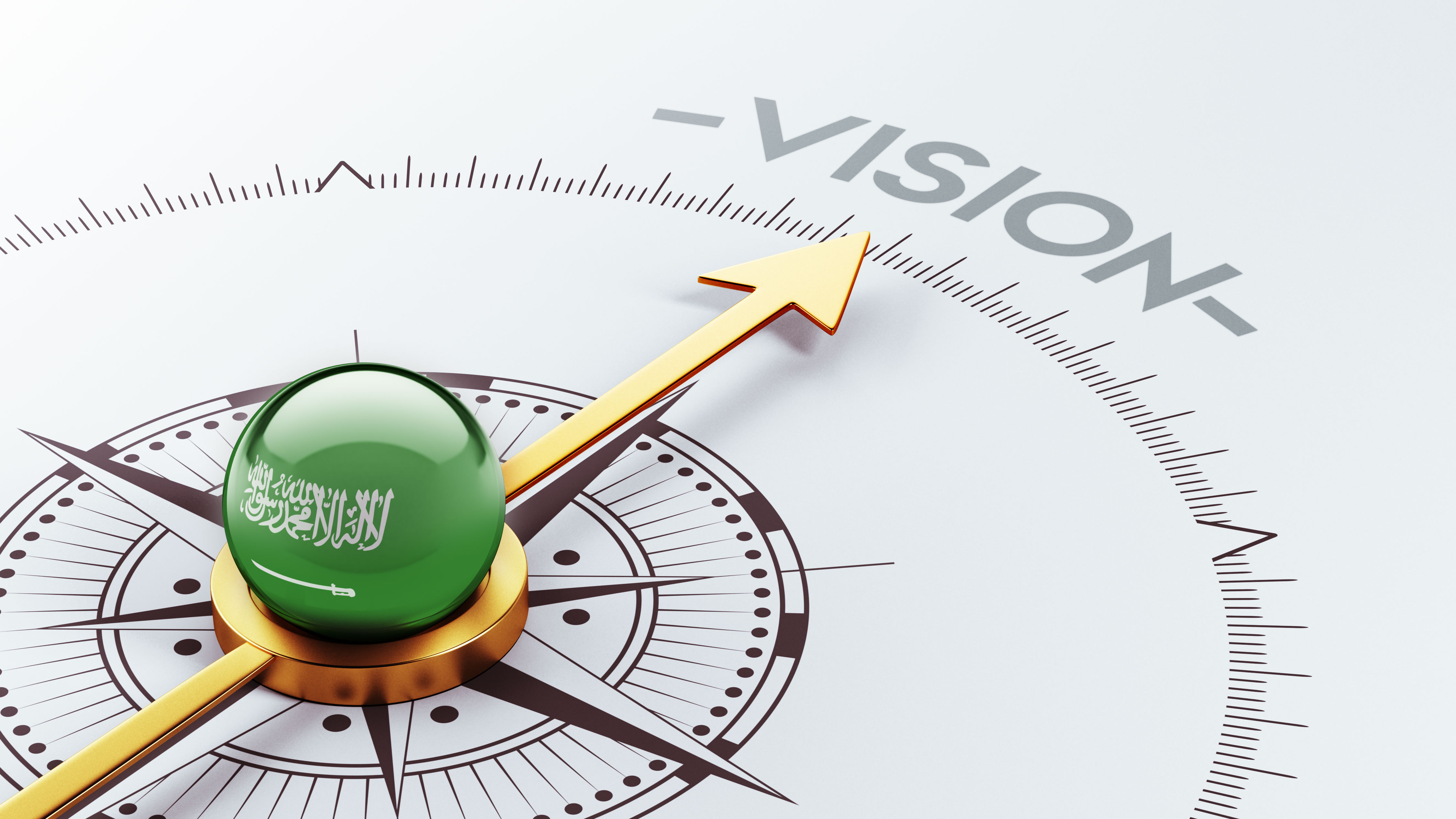 Vision 2030 Dynamic Input-Output Table