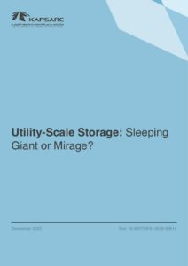 Utility-Scale Storage: Sleeping Giant or Mirage?